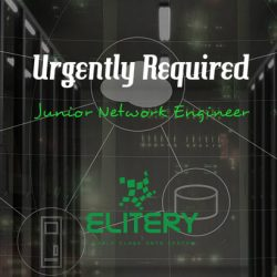 junior network engineer